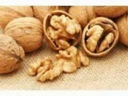 Продам грецкие орехи в скорлупе оптом урожай 2017 года.