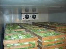 Продам холодильне обладнання для камери зберігання овочів