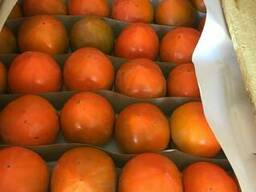 Продам хурму . Гранат, апельсин, лимон, мандарин и др.