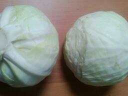 Продам капусту 2сорт (нал/безнал)