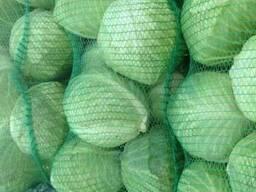 Продам капусту для столових