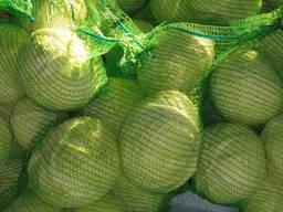 Продам капусту оптом Казахстан