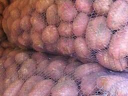 Продам картофель розница