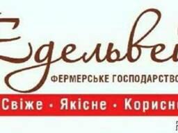 Продам ковбасні вироби (ОПТ, асортимент)