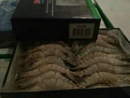 Продам креветки Black Tiger HOSO, широкий выбор морепродукто