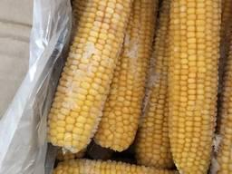 Продам кукурузу качан