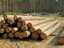 Продам лес круглый пиловочник,рудстойка,стройлес,сухостой.
