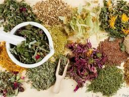 Продам лікарські рослини,трави.Лекарственные растения,травы