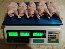 Продам м'ясо перепілки