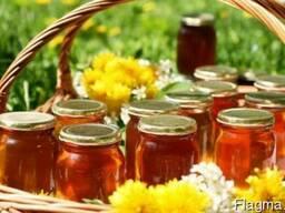 Продам мед цветочный, опт, розница, фасованный