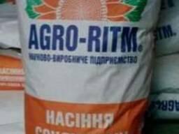 """Продам насіння соняшника """"Яниш"""" (гібрид)"""