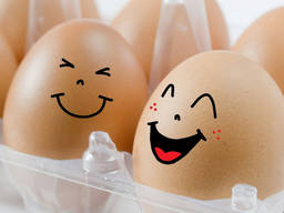 Продам новую холодильную камеру под ключ для хранения яиц
