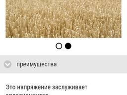 Продам новые элитные немецкие сорта пшеницы