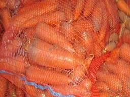 Продам оптом морковь
