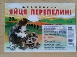 Продам оптом перепелині яйця (столові, інкубаційні)