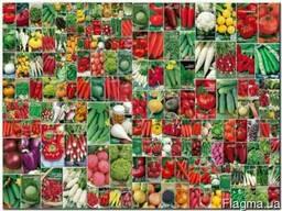 Продам оптом и в розницу сортовые семена овощей, зелени и ба