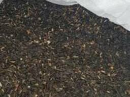 Продам подсолнечник (масличный)