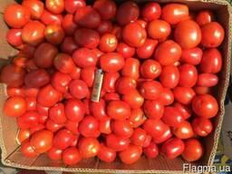 Продам помидор сливка