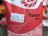 Продам пос.материал семена подсолнечника Limagrain Тунка