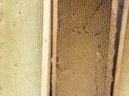 Продам рамки сушь медовую 300 дадан -(соты) для пчел