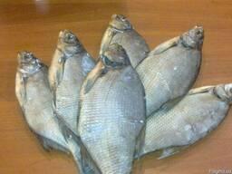 Продам речную вяленую рыбу