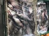 Продам рыбу свежую, свежемороженую щука - фото 2