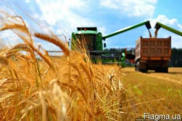Продам сельхозпредприятие в Киевской обл. 1574га