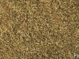 Продам семена укропа в ассортименте, оптом и в розницу.