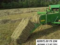 Продам сено луговое, урожай 2019г.