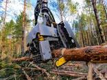 Продам сосновые дрова 4 метра - фото 2