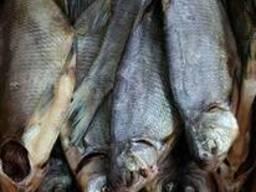 Продам вяленую рыбу в ассортименте. Тарань, Лещ, мелкий лещ,