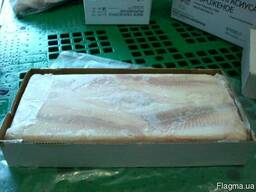 Продам свіжоморожену морську рибу