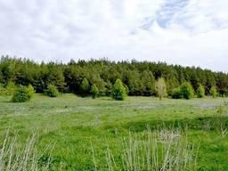 Продам участок 111 соток под Киевом (садоводство)