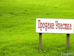 Продам участок в Путровке Васильковского района