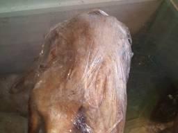 Продам утку тушка очищенная (охлажденная), эко-продукт.