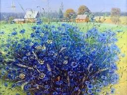 Продам Василек синий (цветы)