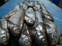 Продам весь ассортимент речной рыбы