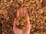 Продам ядро грецкого ореха - фото 3