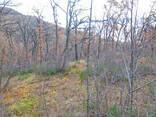 Продам земельный участок 12 сот Малый Маяк Алушта АР Крым - фото 2