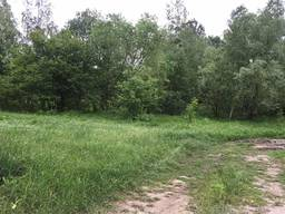 Продам земельный участок 3 Га Ворзель, Буча, Варшавская трас - фото 2