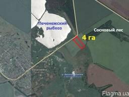 Продам земли ОСГ 4 га в с. Базалиевка - фото 3