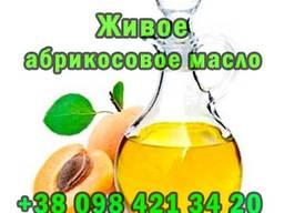 Продам живе абрикосове масло