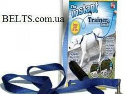 Купить. Поводок для выгула собак Instant Trainer Leash (Инсте
