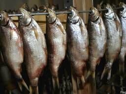 Продаём рыбу вяленую. Оптом