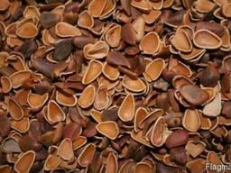 Продаём скорлупу кедрового ореха