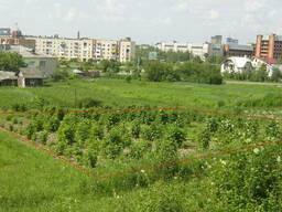 Продаю ділянку - 3 сотки, під забудову в м. Кременець - photo 4