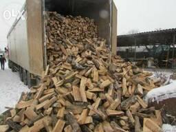 Продаю дрова дуб с доставкой Бровары район