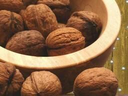 Продаю грецкий орех и фундук. / Sell walnut and hazelnut.