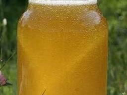Продаю натуральной мед