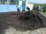Продажа чернозема земли, купить грунт, доставка Ирпень - фото 4